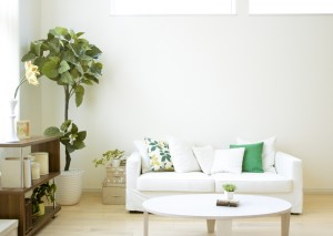 How to Brighten a Small Room - bhgrelife.com
