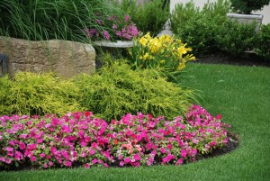 6 Tips for Water-Efficient Landscaping - bhgrelife.com