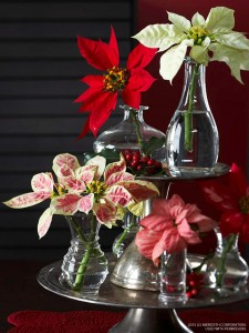 Beautiful Thanksgiving & Christmas Holiday Displays - bhgrelife.com