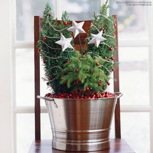 Creative Christmas Decorating with Cranberries - bhgrelife.com
