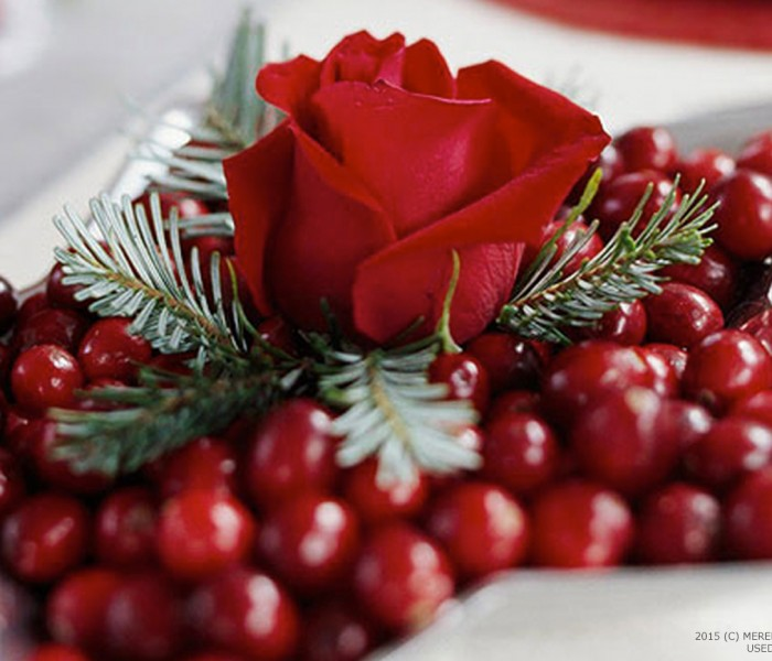Creative Christmas Decorating with Cranberries