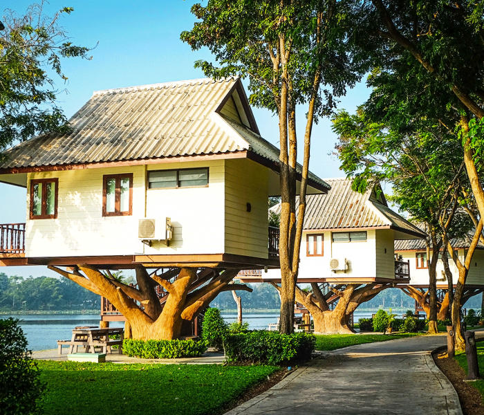 Trendy Treehouses Uproot Millions