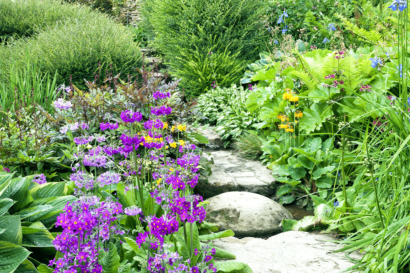 Ask a Pro Q&A: Starting an English Cottage Garden - bhgrelife.com