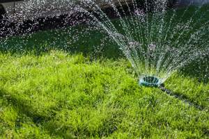 10 Tips to Improve Your Landscaping in the Spring - bhgrelife.com