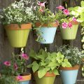 Colorful Outdoor Entertaining Ideas for Your Next Gathering