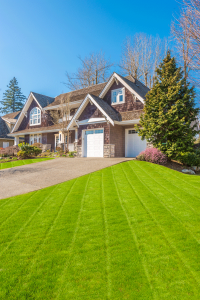 4 Tips for Creating a Luscious Lawn - bhgrelife.com