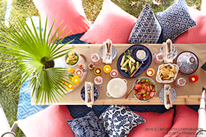 Easy Themes for Memorable Outdoor Parties - bhgrelife.com