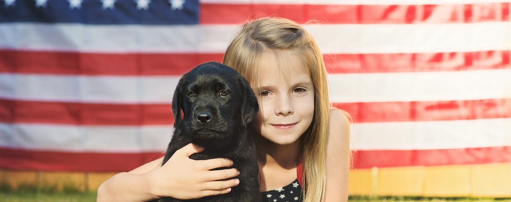 Fireworks and Pets:  The Do's and Don'ts