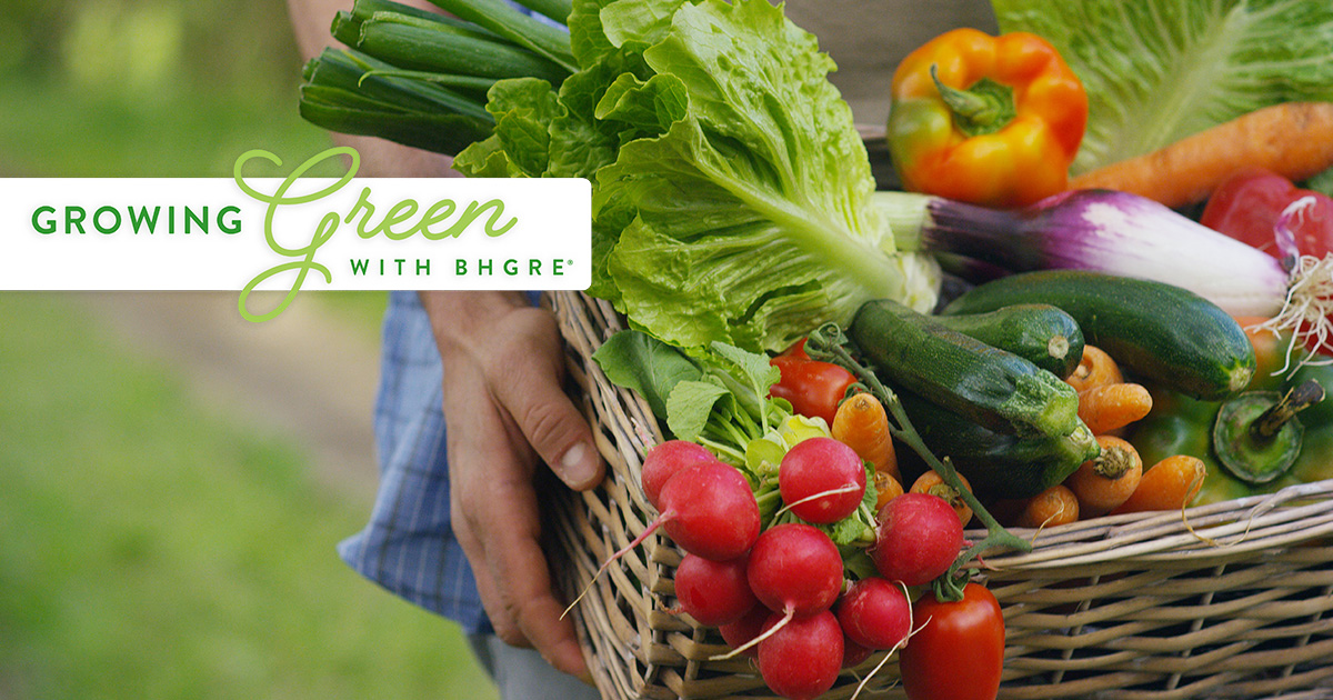 Growing Green with BHGRE - Season Produce